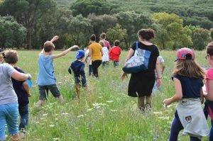 Estágios | Educação ambiental | Environmental education