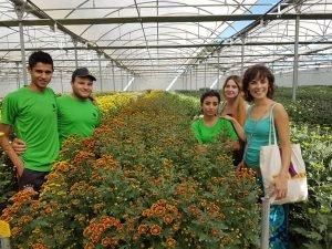 Estágios | Floricultura | Floriculture